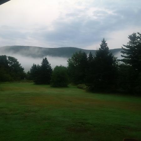 NS Fog